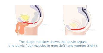 Urinary incontinence in men treatments at CJA Aesthetics in Southampton and Winchester